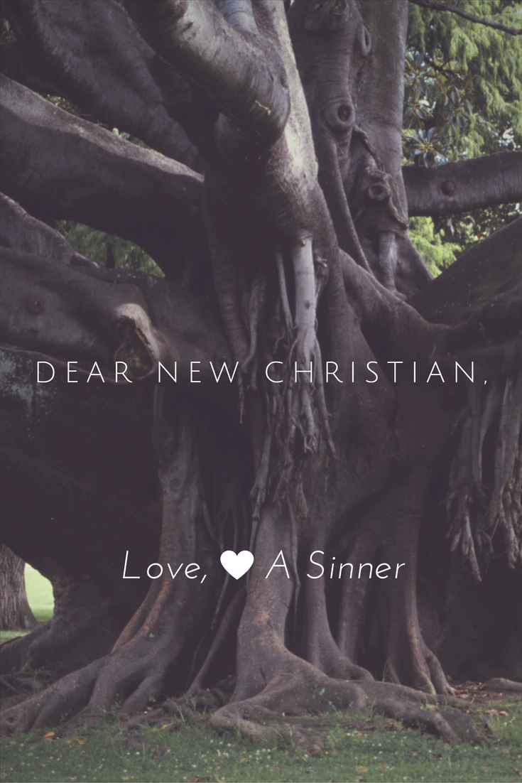 Are you a new Christian with lots of questions about what this new life will be like? I was once in your shoes, friend.