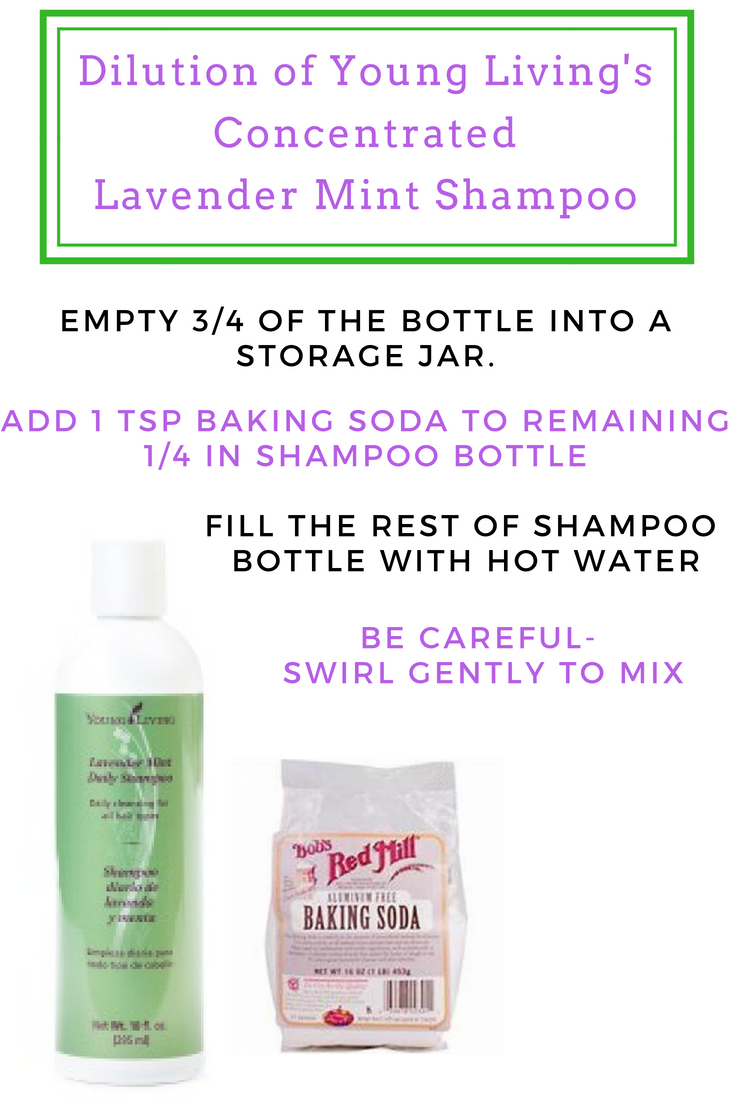 How to Dilute Young Living Lavender Mint Shampoo Grace Blossoms Blog.png