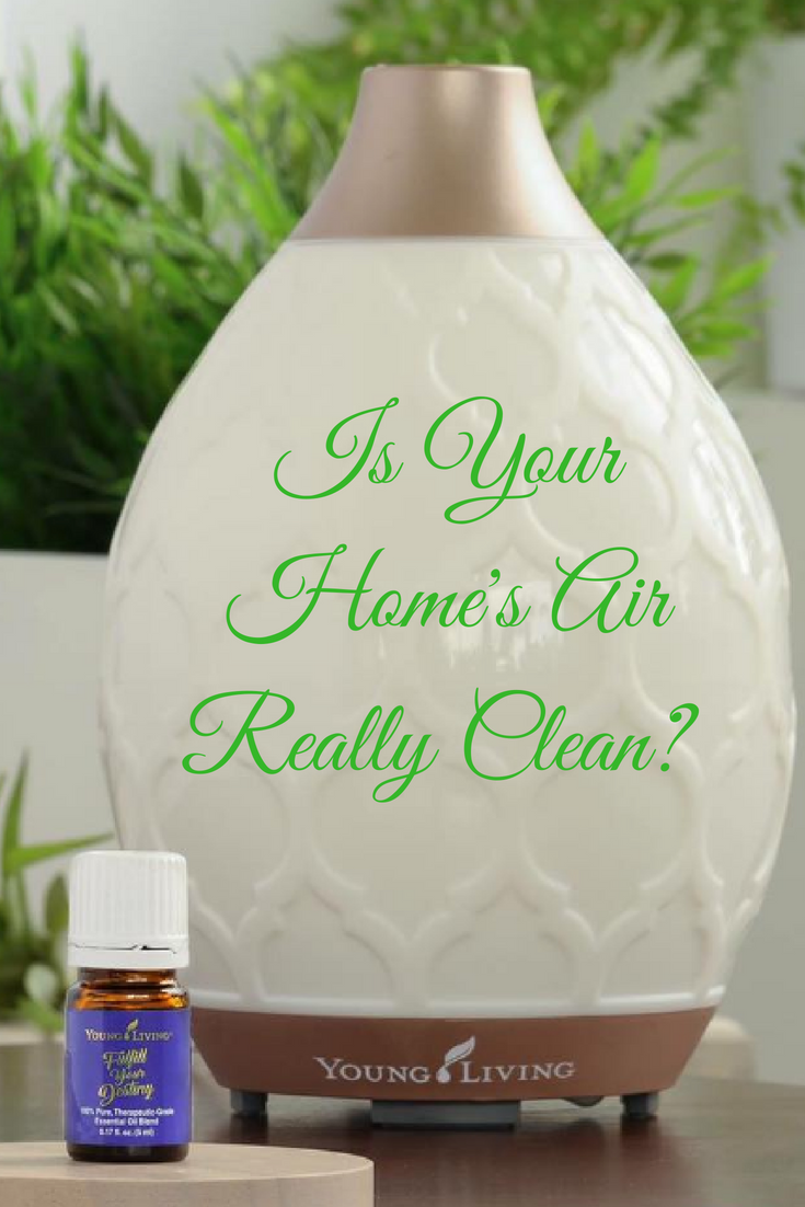 Is Your Home Toxic? Take This Quiz to Find Out! -